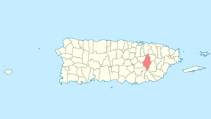 International Shipping from Caguas, Puerto Rico